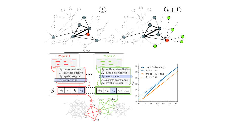 Network dynamics of innovation processes