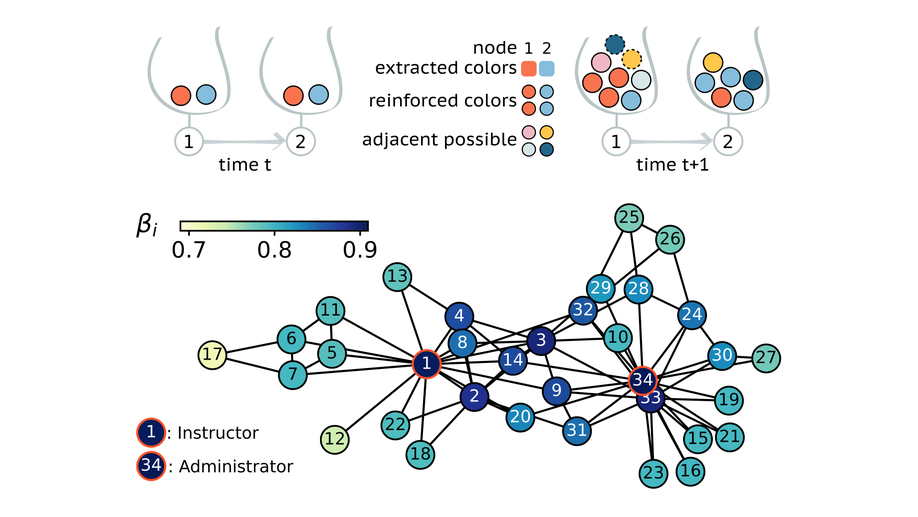 Interactive discovery processes on complex networks